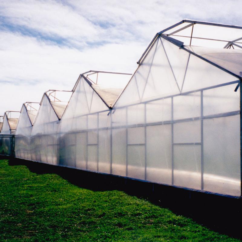 Teli termici per serre