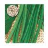Fagiolo Nano Dolico dall'occhio Veneto (senza filo) LA ROSA 500 g Sementi
