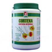 Mastice per innesti e potature - Corteccia artificiale CORTEXA VEBI 1000g