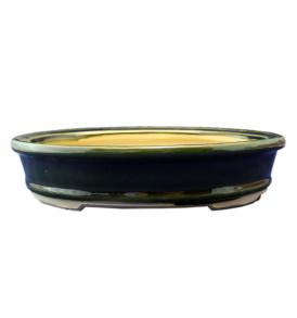 vaso per bonsai verde