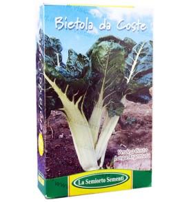 Semi Bietola da coste verde a costa argentata LA SEMIORTO 453g sementi