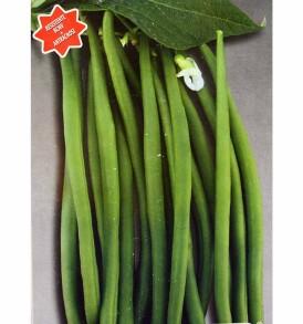 Semi Fagiolo nano Grenada 1 Kg FOUR sementi