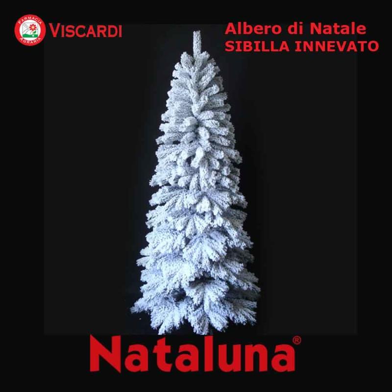 Albero Di Natale 800 Rami.Albero Di Natale Innevato Sibilla Nataluna 2
