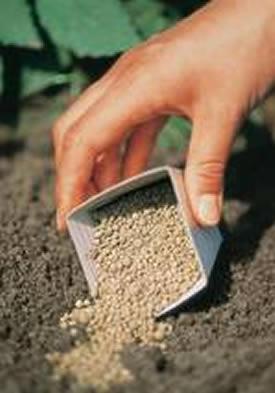 Concimi - Fertilizzanti